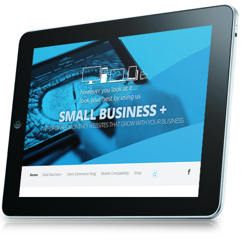 Premium small business monthly website design with auto detect mobile compatible website that will develop and grow with your business